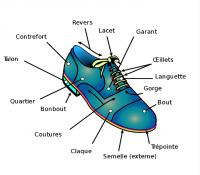Bien choisir ses chaussures : les différents critères à prendre en compte